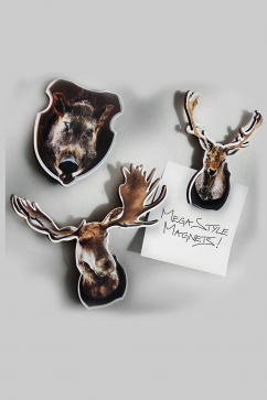 donkey-wild-style-magnets-multicolor
